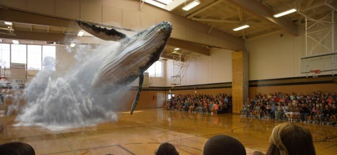 magic-leap-whale-jump